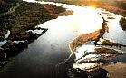 Szlak Doliny Dolnej Wisły
