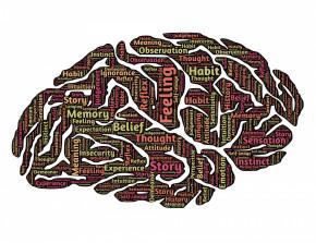 BIOFEEDBACK- koncentracja, pamięć, samokontrola, relaksacja
