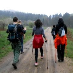 Żwawy marsz przez Trójmiejski Park Krajobrazowy