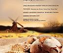 XXII Święto Chleba