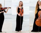 Koncert tria smyczkowego z cyklu Akademia Muzyczna w Politechnice