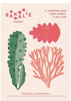 Bakalie | edycja wiosenna