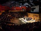 Dzień Dziecka w Filharmonii: Filharmonia dla Juniora i Bajka o Myszce Fredericku