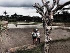 Autostopem przez Azję południowo-wschodnią