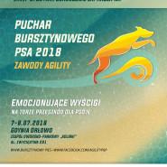 I i II Zawody Agility Pucharu Bursztynowego Psa 2018
