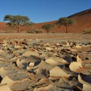 Zmysłowa Afryka, czyli 4000 km przez Namibię