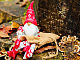 Nocny Świąteczny Pchli Targ