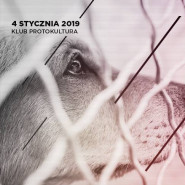 Protokultura dla Schroniska Promyk