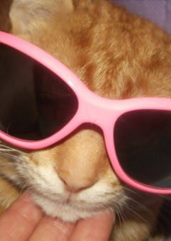 Na świat patrzeć przez różowe okulary