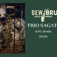DEW & BRU jazz night - trio SaGaTo