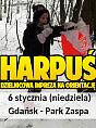 Harpuś - rusz z mapą po przygodę
