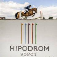 Halowe Zawody Regionalne w Skokach przez przeszkody JumpOFF IV