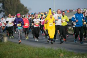 AmberExpo Półmaraton Gdańsk - Gdańsk, 16 - 17 listopada 2019