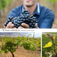 Komentowana degustacja polskich win z Winnicy Mierzęcin