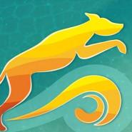 Puchar Bursztynowego Psa 2019 - Zawody Agility