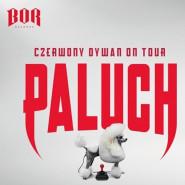 Paluch - Czerwony Dywan
