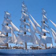 Cisne Branco w Gdyni