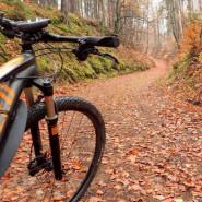 Wypad rowerowy wokół jezior Nadleśnictwa Kolbudy