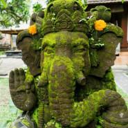 Sztuka Podróżowania | Zrozumieć Bali