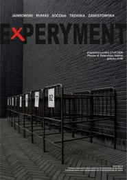 Experyment -
