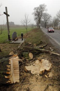 W lutym 2008 r. feralne drzewo, na którym rozbił się autokar, zostało wycięte wraz z innymi drzewami znajdującymi się na poboczu. Po wydarzeniach z 1994 r. został ustawiony pomnik, na którym do dziś odczytać można imiona, nazwiska i wiek ofiar wypadku.