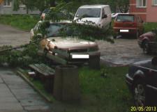 Gałąź spadła na samochód zaparkowany w centrum Gdyni.