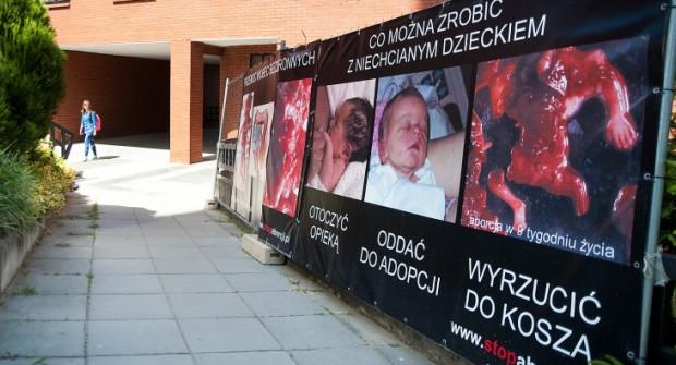 Antyaborcyjne Plakaty Na Chełmie Edukują Czy Prowokują