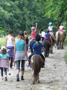 Naukę jazdy konnej można zacząć w każdym wieku, jednak najlepszy wiek na rozpoczęcie treningów to 7-8 lat.
