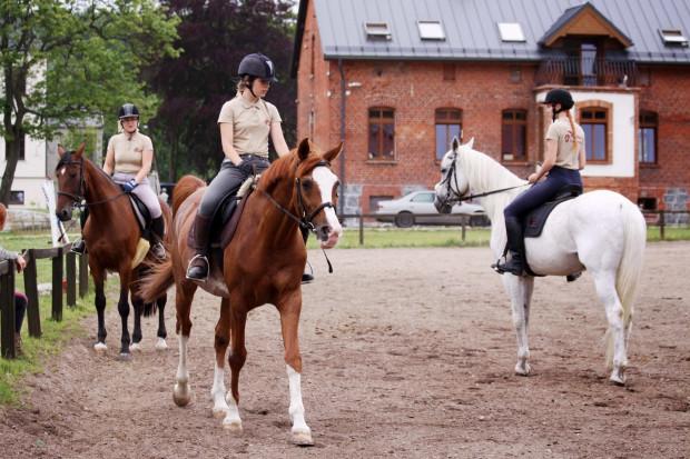 Nauka podstaw jeździectwa to sprawa indywidualna. Wszystko zależy od wieku, predyspozycji i czasu poświęconego na trening.