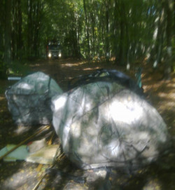 Leśniczy z Rogulewa koło Gdyni, ma zamiar złapać sprawców wyrzucenia części samochodowych na leśną drogę. Grozi im grzywna 1 tys. zł.