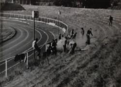 W ramach obowiązkowych prac społecznych uczniowie II LO porządkowali stadion Lechii.