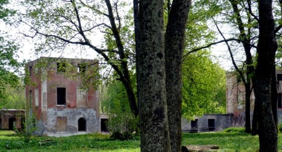 Ruiny pałacu rodu Dohnów w Markowie