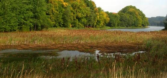 Panorama z Piekła Dolnego na odnogę jeziora Przywidzkiego