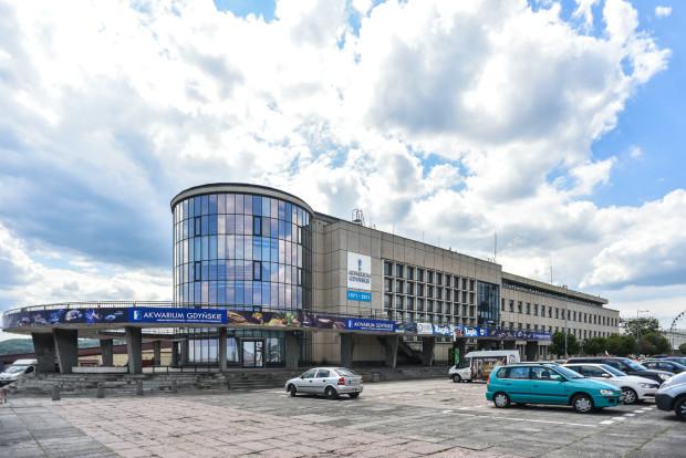 Gdyńskie Akwarium w sezonie odwiedza 3,5 tys. gości dziennie. Ta liczba oczywiście wzrasta w deszczową pogodę.