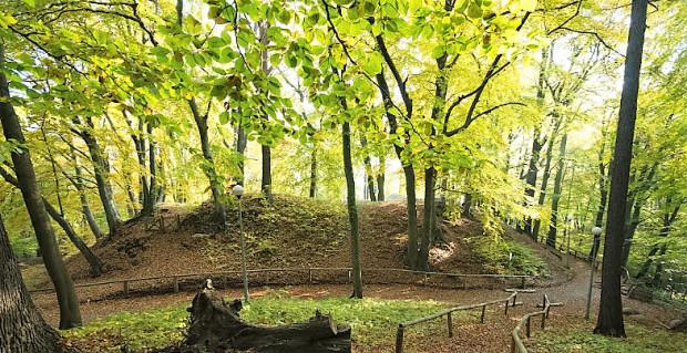 Od strony wzgórz morenowych chroniła gród wykopana fosa i usypany z urobku wał, zwieńczony palisadą.