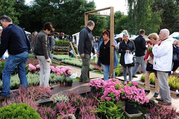 Oprócz produktów spożywczych z małych i ekologicznych gospodarstw, na gdyńskiej imprezie można znaleźć sprzęty ogrodnicze i roślinność ozdobną.