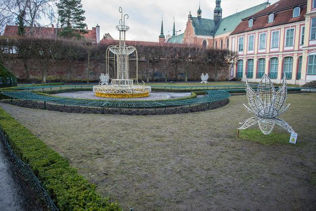Efektem ubocznym świątecznej iluminacji są kompletnie zadeptane trawniki w okolicy Pałacu Opatów w parku Oliwskim.