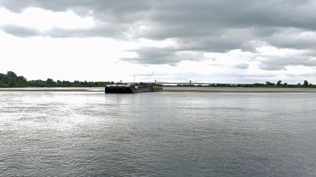 Jedna z dwóch barek na Wiśle, która została zacumowana w rejonie Kwidzyna z myślą o miejscu lęgowym rybitwy rzecznej. Jest to rekompensata za budowę mostu drogowego w Kwidzynie.