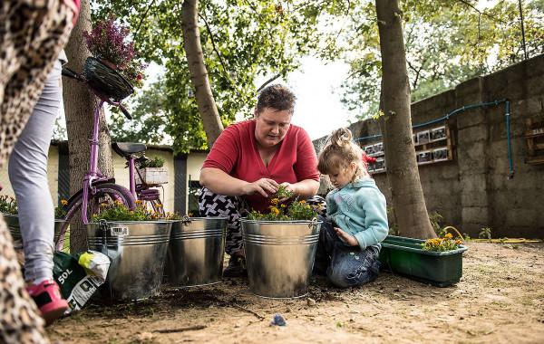 Ogrody społeczne to szansa na integrację sąsiedzką oraz międzypokoleniową. Na zdjęciu teren Dolnego miasta w Gdańsku.