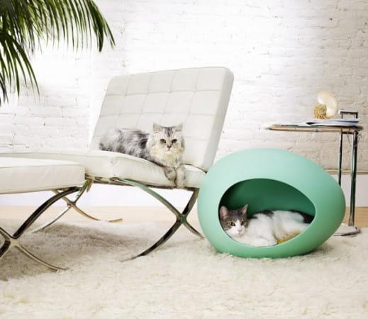 Meble dla zwierząt mogą być eleganckie, stylowe i komfortowe.