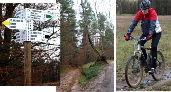 Wydostając się z trójmiasta pokonujemy różne szlaki zarówno piesze jak i rowerowe