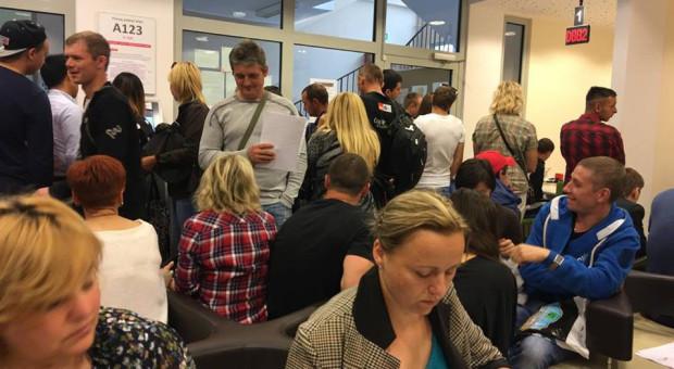 PUW wzbogacił się o nowe stanowiska pracy dla urzędników. Czy to koniec długich kolejek i wielomiesięcznego oczekiwania na legalizację pobytu i możliwość pracy w Trójmieście?