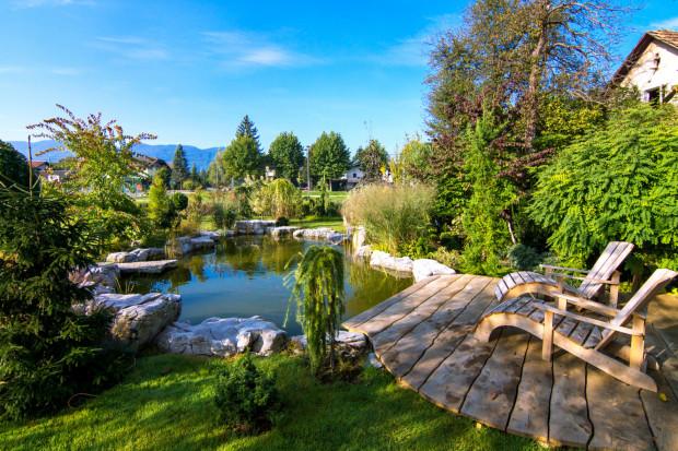 Od ogrodu do krajobrazu
