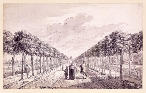 Wielka Aleja w 1773 r. (źródło: Gedanopedia)