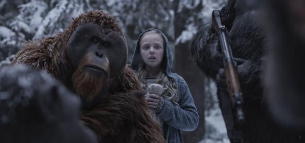 Konflikt pomiędzy ludźmi a małpami wkracza w finałową fazę, w której nie ma już praktycznie szans na kompromis. Iluzoryczną nadzieją na międzygatunkowe pojednanie staje się Nova - zarażona małpim wirusem dziewczynka, która jako jedyna potrafi zachować balans pomiędzy dwoma spornymi racjami.