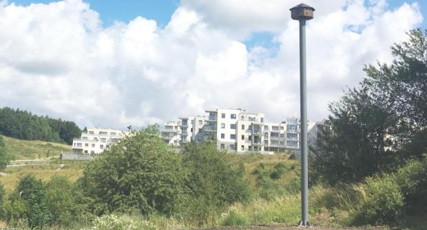 Wieża lęgowa przy ul. Buraczanej. Zmieści się tam do 16 par ptaków.