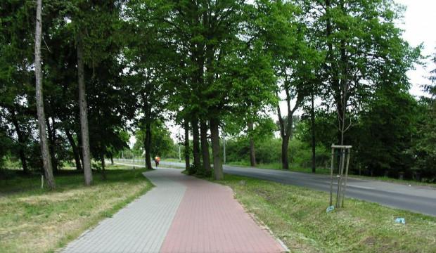Zbudowany kilka lat temu fragment drogi rowerowej przy ul. Boguckiego połączy się nową drogą rowerową na Wyspie Sobieszewskiej.