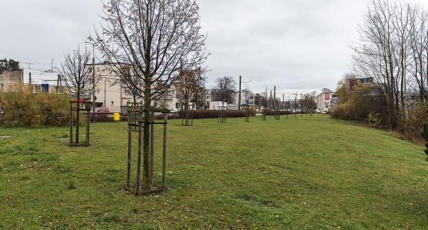 Na zabudowę wciąż czeka teren na skrzyżowaniu ulic Wielkopolskiej i al. Zwycięstwa.