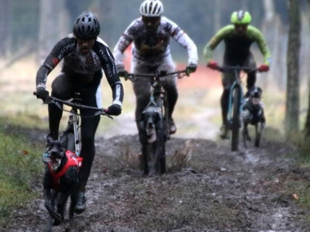 Trasa mistrzostw była niemal w całości pokryta błotem, co znacząco wpływało na trudność rywalizacji.