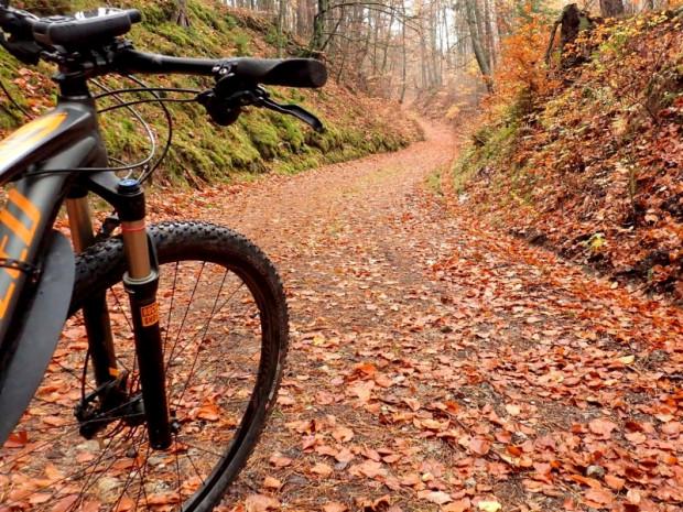 Obecny, główny szlak rowerowy Trójmiejskiego Parku Krajobrazowego skierowany jest przede wszystkim do miłośników kolarstwa górskiego. Mało tu odcinków, którymi moglibyśmy poruszać się rowerami trekkingowymi.
